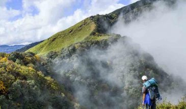 Dzukou Valley Trekking and Camping